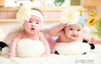 Babies 36