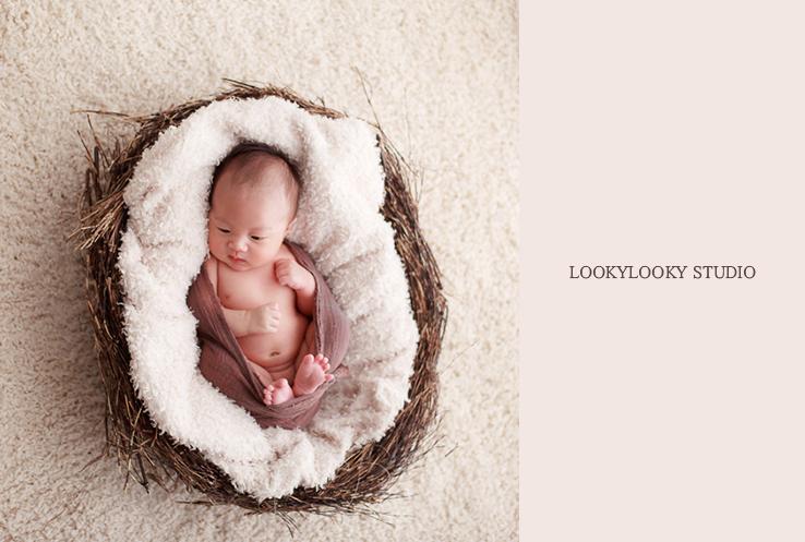 Aliyah baby photogaphy sydney